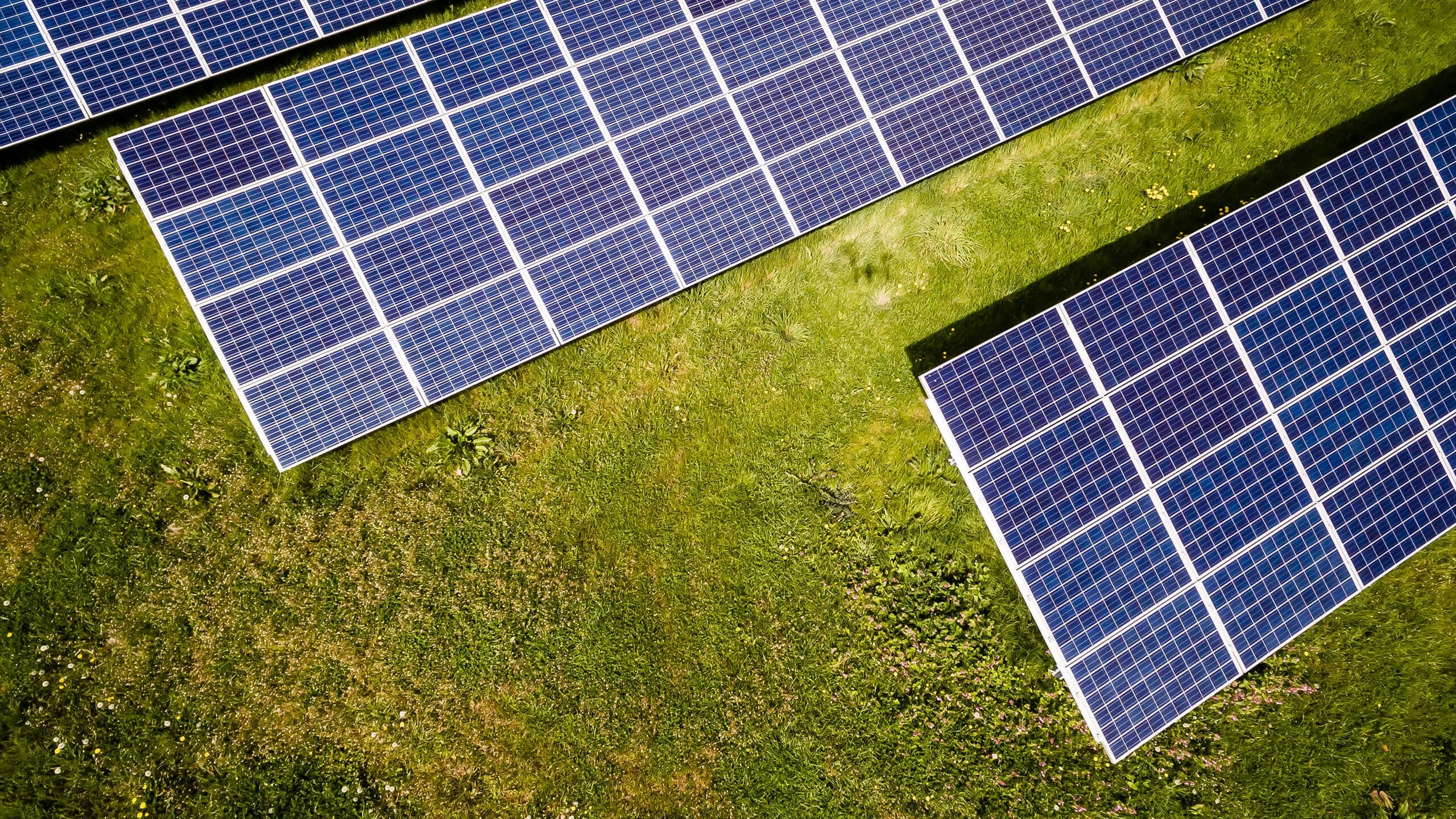 aerial-view-of-solar-panels-min